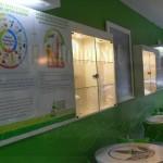 Desain-Interior-Solo-Cafe-Herbalife-Rumah-Eisya-7